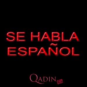 İspan dili 12-ci dərs