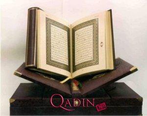 Quran tərcüməsi