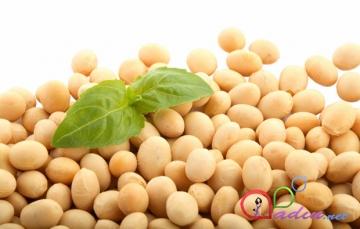 D vitamini baxımından zəngin olan 10 qida