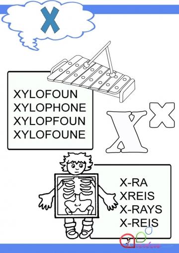 İngilis dili-Xx və Yy