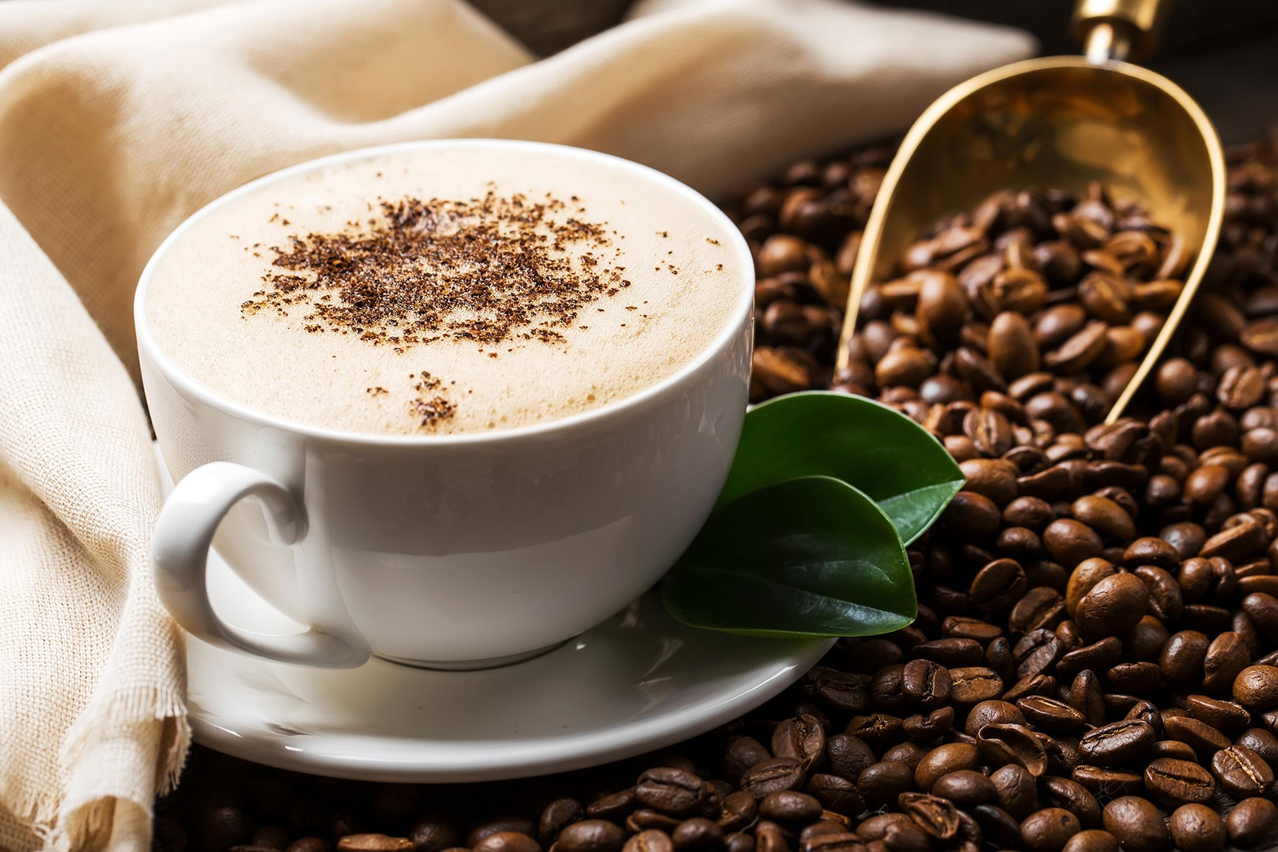 مميزات حلقة تجميع القهوة